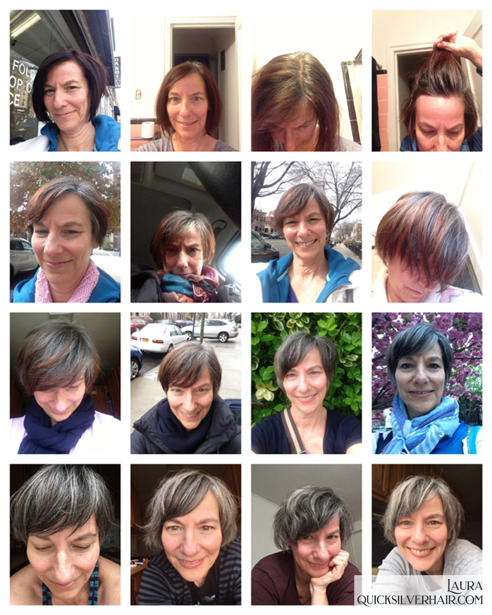 Collage image of Laura's gray hair transition