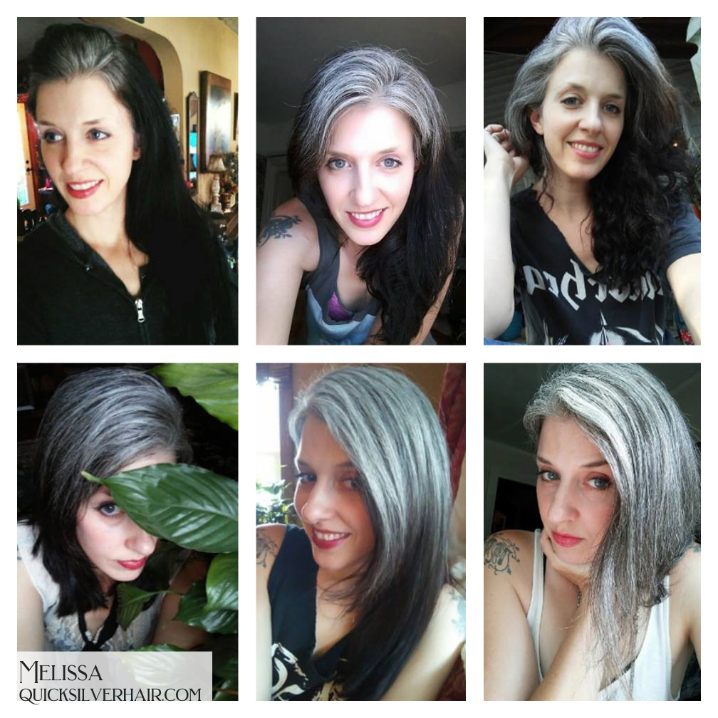 Melissa L Transition To Gray Hair Collage Image