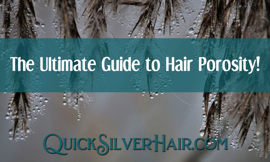 The Ultimate Guide to Hair Porosity: Does it really matter?