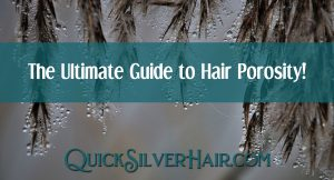 The Ultimate Guide to Hair Porosity: Does it really matter? Feature image