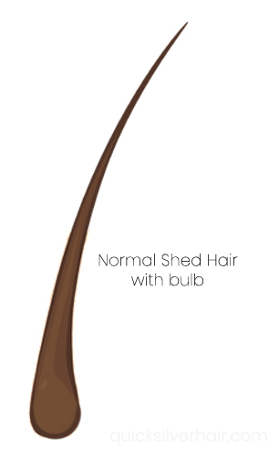 Normal Shed Hair Diagram