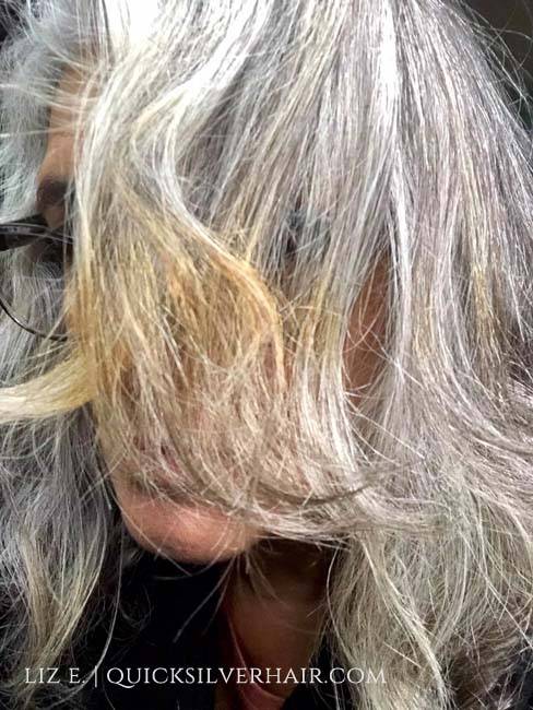 Image of burnt gray hair from heat damage