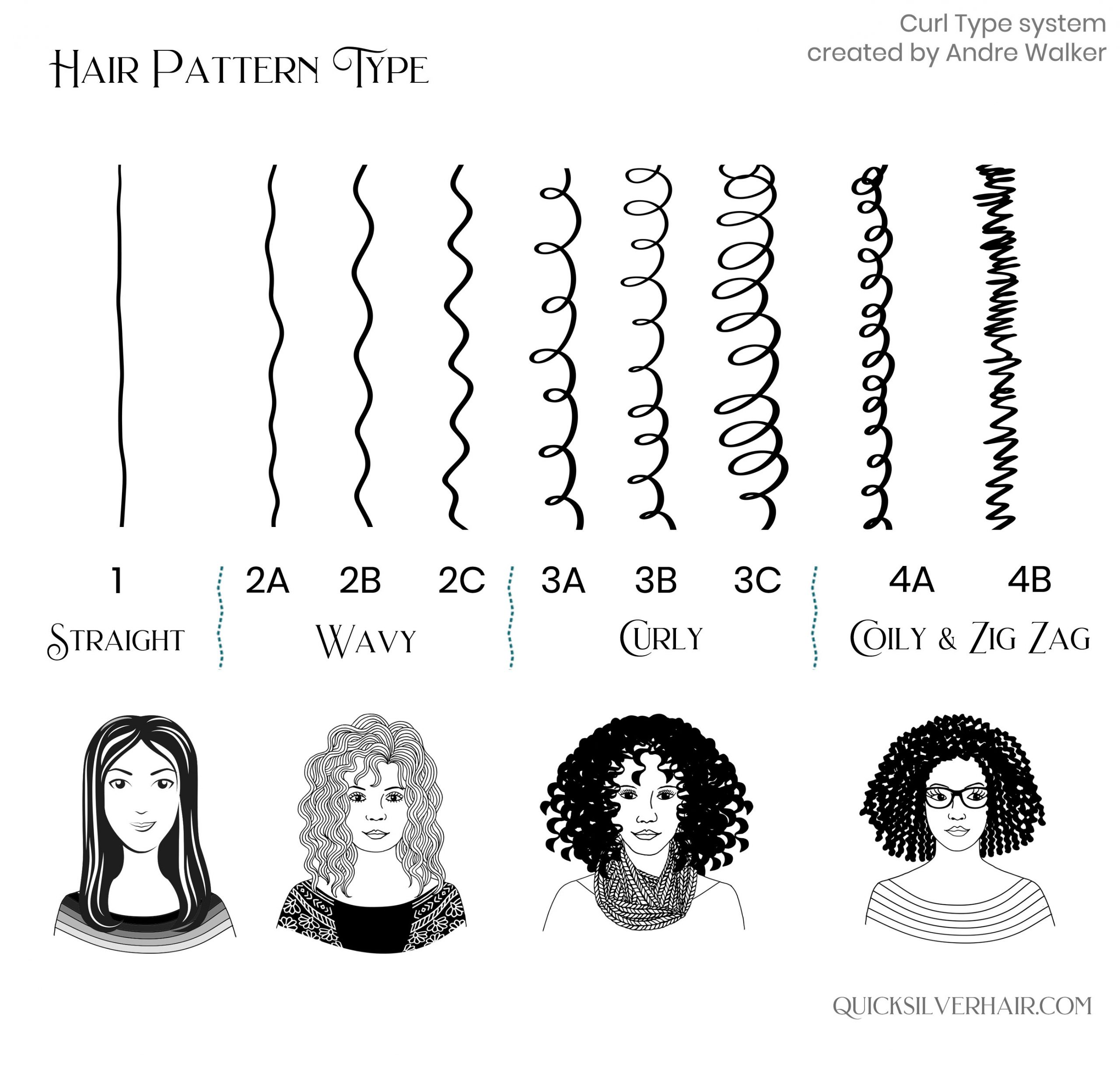 Chart of Hair Pattern Types